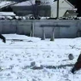 Embedded thumbnail for Ski de fond dans la cour d'école - vidéo promo